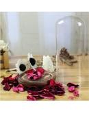 玻璃罩含乾燥花擺飾