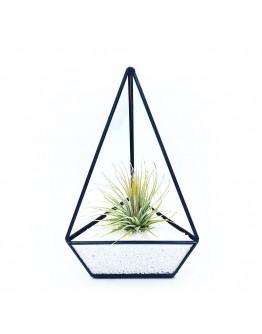 北歐幾何玻璃花房B款