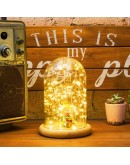 火樹銀花 LED夜燈 直徑10cm
