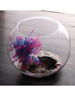 35cm玻璃魚缸