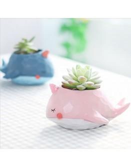 花園派對鯨魚島花盆